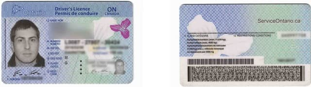 Ontario Driver's License front and back