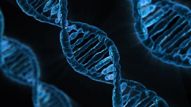 DNA via https://pixabay.com/illustrations/dna-biology-medicine-gene-163466/