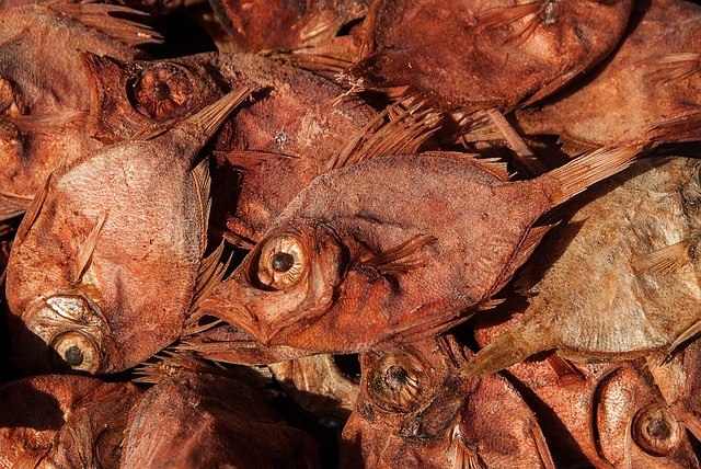 Dried Fish via https://pixabay.com/en/dried-fish-fishing-fish-1273439/