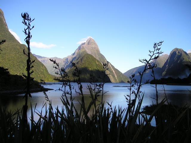 New Zealand via https://pixabay.com/static/uploads/photo/2010/11/25/new-zealand-130_640.jpg
