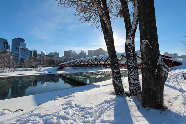 Peace Bridge in Calgary by https://www.flickr.com/photos/davebloggs007/