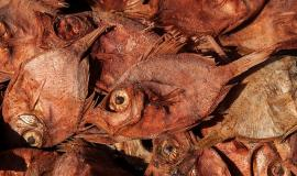 Dried Fish via https://pixabay.com/en/dried-fish-fishing-fish-1273439/