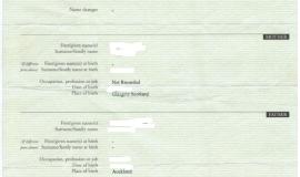 New Zealand Birth Certificate